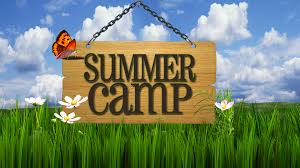 Programming camps in Summer Holidays + workshops training
